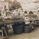 Die Gärtnerei Maurer verkauft ihre Produkte auf dem Markt in Eisenach. Entstanden ist das Foto vermutlich Anfang/Mitte der 30er Jahre. Das Bachdenkmal, das im Hintergrund vor der Georgenkirche zu sehen ist, wurde 1938 umgesetzt. Seitdem steht es vor den Bachhaus am Frauenplan.