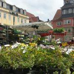 Blumen- und Gartenmarkt in Eisenach 2017