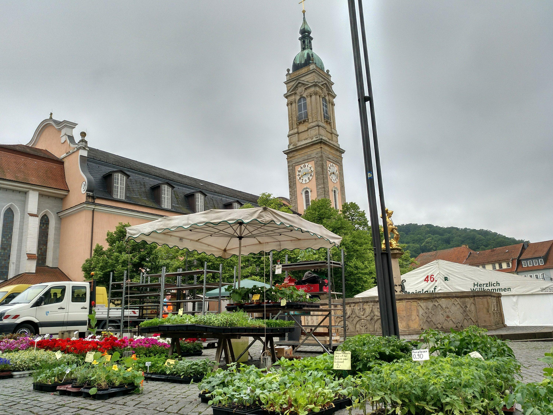 Gärtnerei Maurer 2018 Markt Eisenach